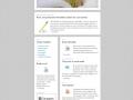 newsletter-template-03